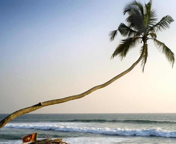 Tropisches Sri Lanka