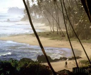 Barberyn Beach Ayurveda Resort