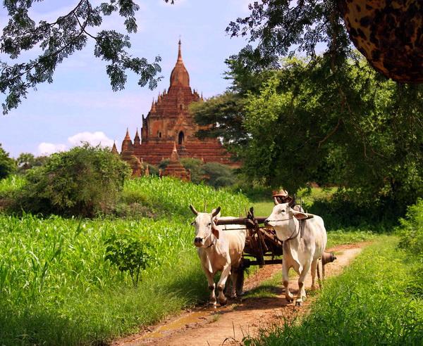 Burma - Die Höhepunkte ganz klassisch