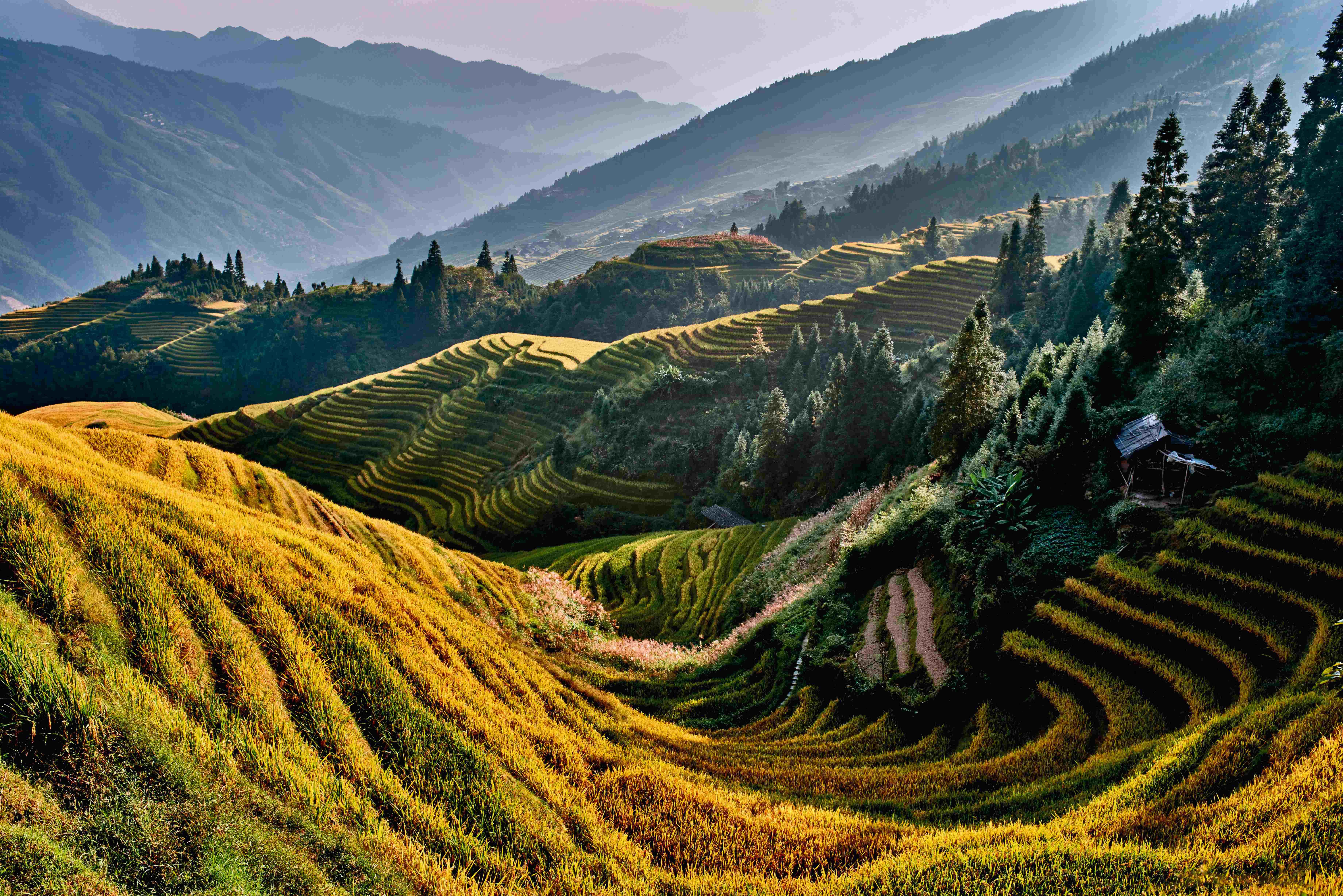 China & Tibet: Höhepunkte