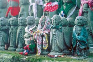 Höhepunkte Japans erleben