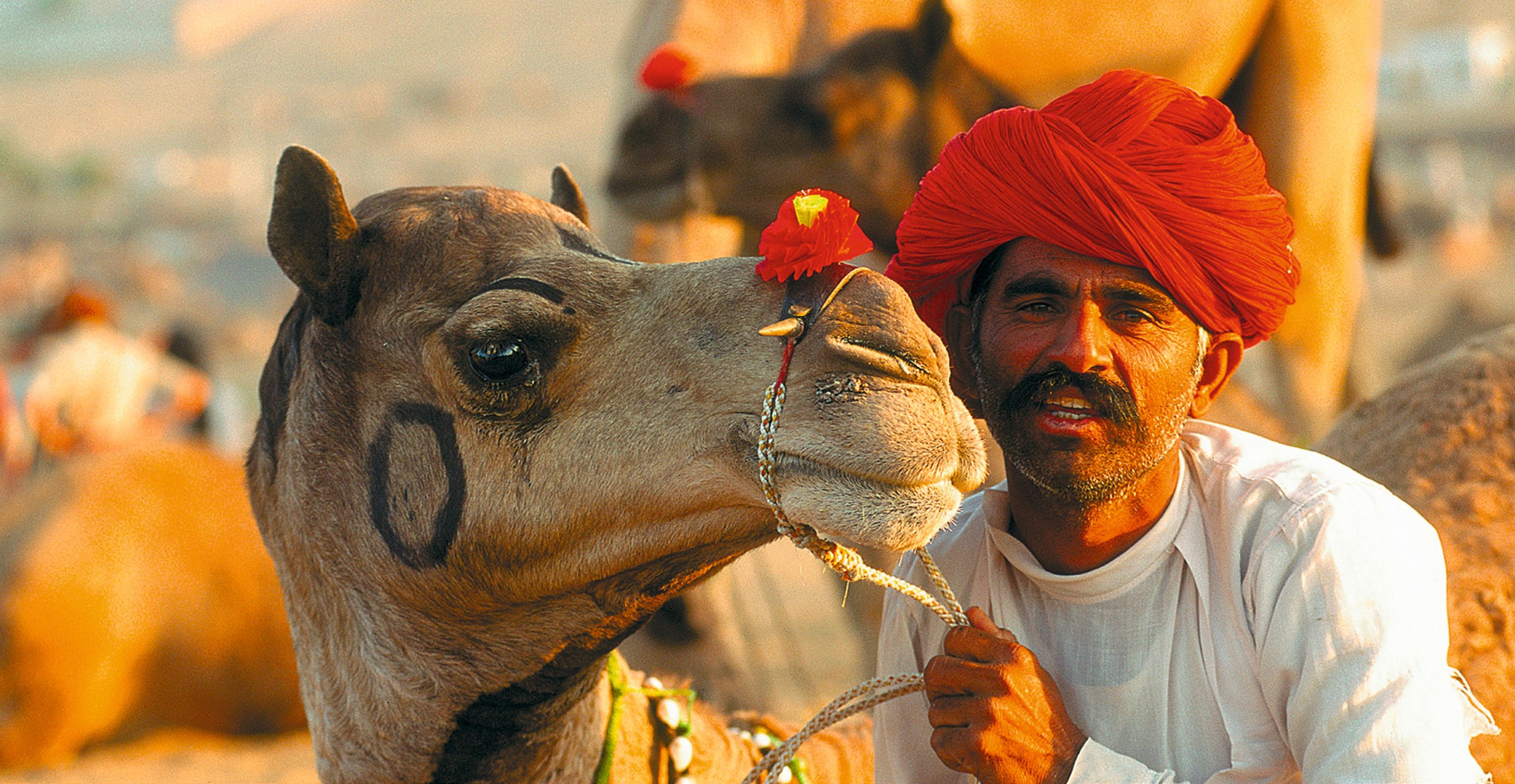 Indien: Höhepunkte Rajasthans
