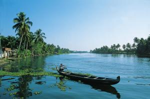 Indien: Kerala - die Tropen Indiens