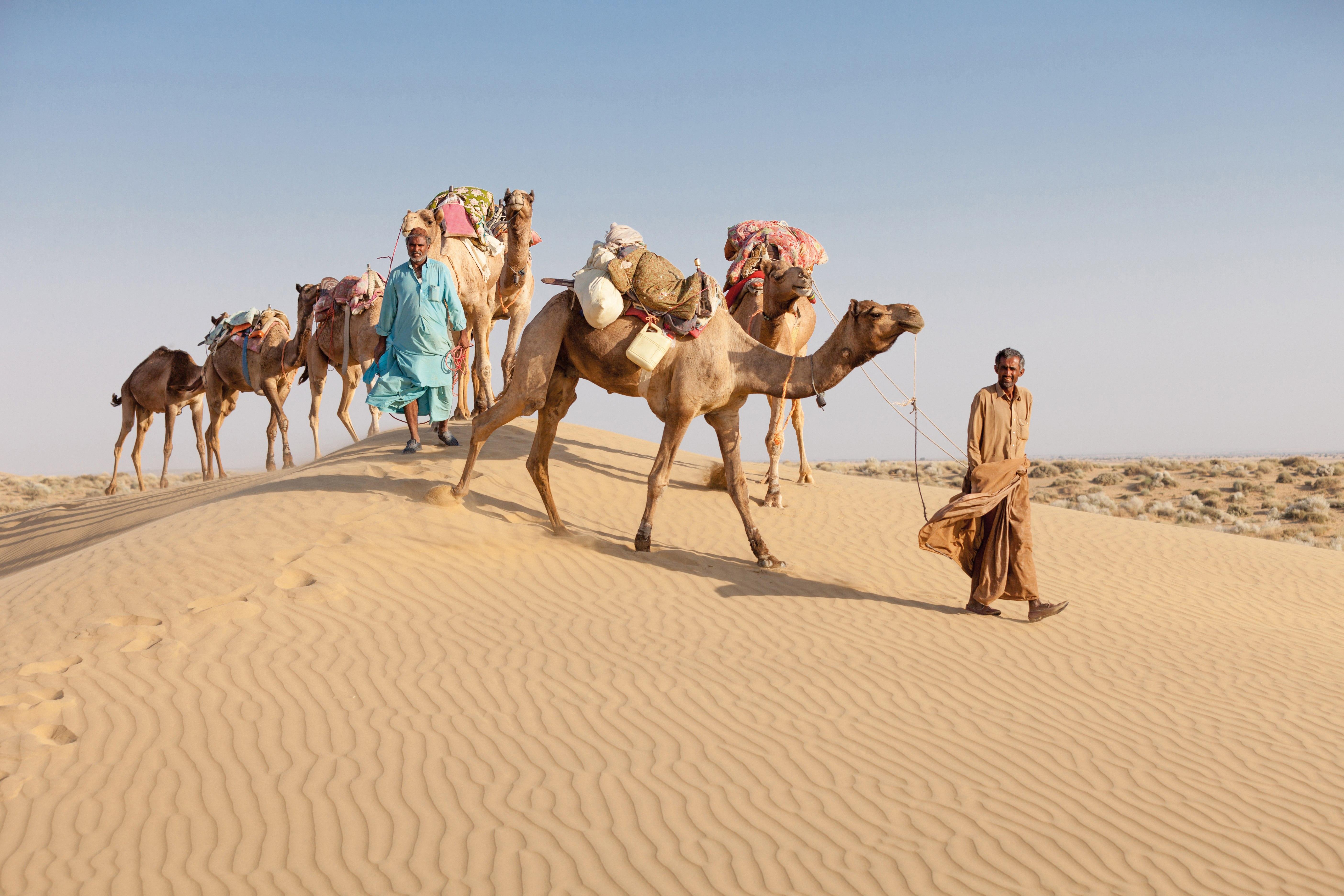 Indien: Rajasthan & Nordindien – Die ausführliche Reise