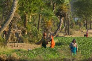 Indien und Nepal  -  der Klassiker