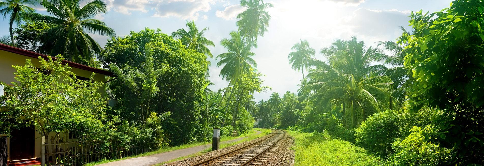 Schienen auf Sri Lanka