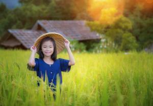 Kleingruppen-Rundreise & Baden - Vietnam, Kambodscha (Standard)