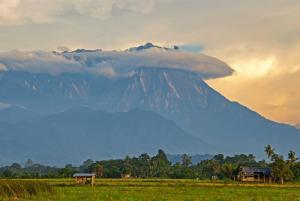 Malaysia | Borneo - Die Insel der Waldmenschen