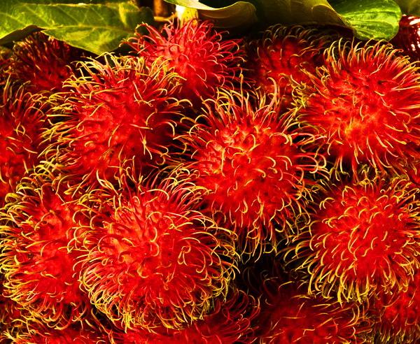 Leckere Rambutan