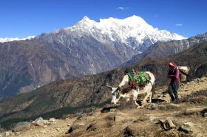 Nepal - Gosainkund und Helambu