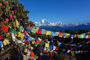 Nepal • Bhutan - Vom Poon Hill zum Tigernest