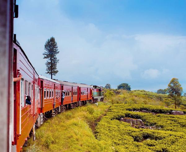 Per Zug durch Sri Lanka