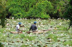 Sri Lanka  -  Inselträume im Indischen Ozean