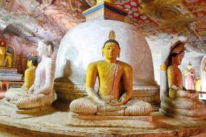 Sri Lanka: Höhepunkte