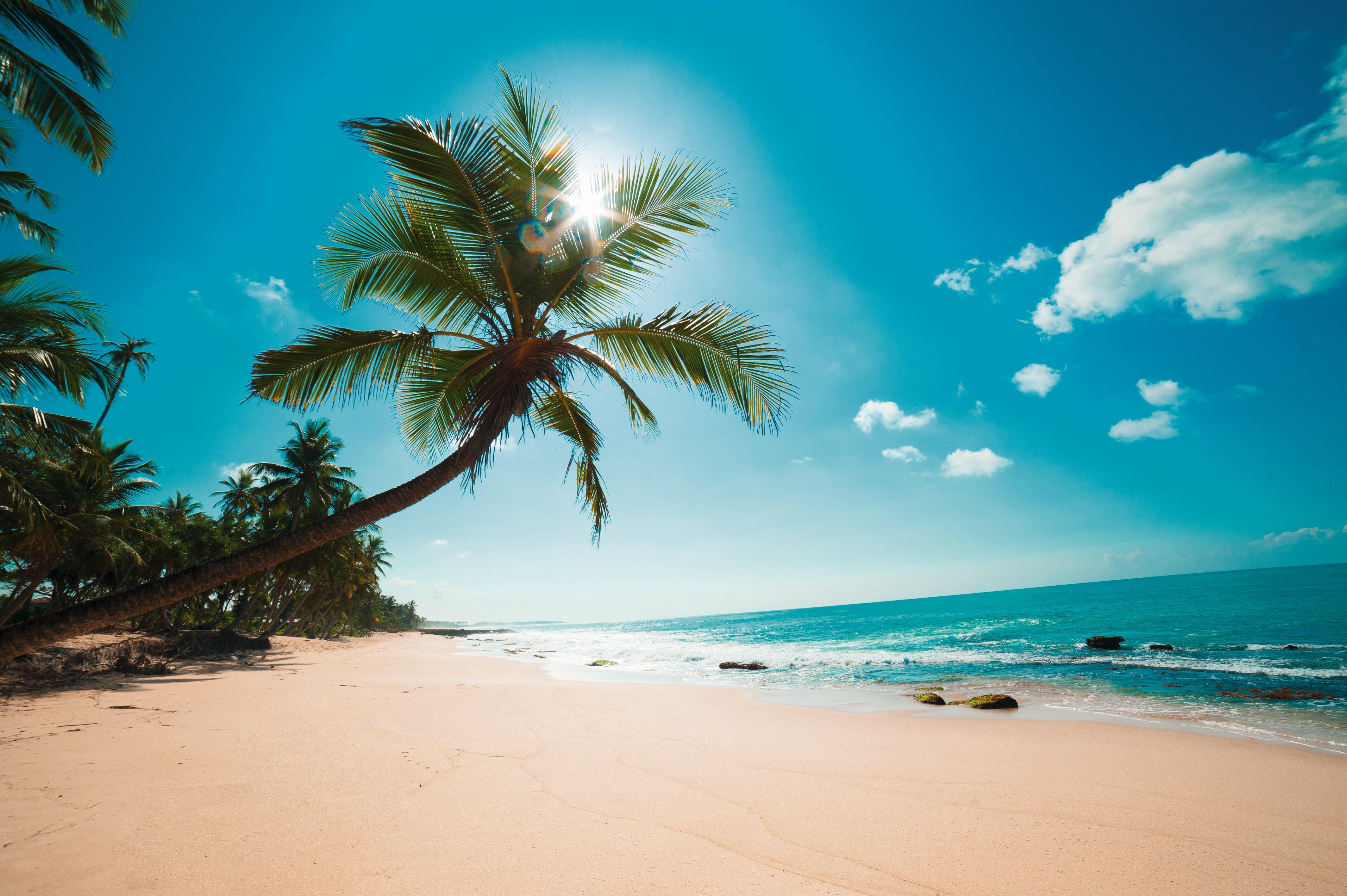Sri Lanka: Höhepunkte im Sommer