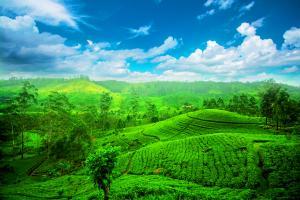 Sri Lanka: Höhepunkte mit Ostküste