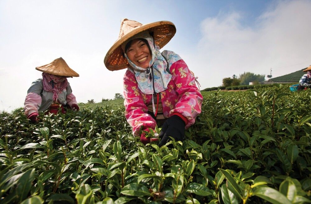 Taiwan - Ilha Formosa – Zwischen Konfuzius und Jadeberg