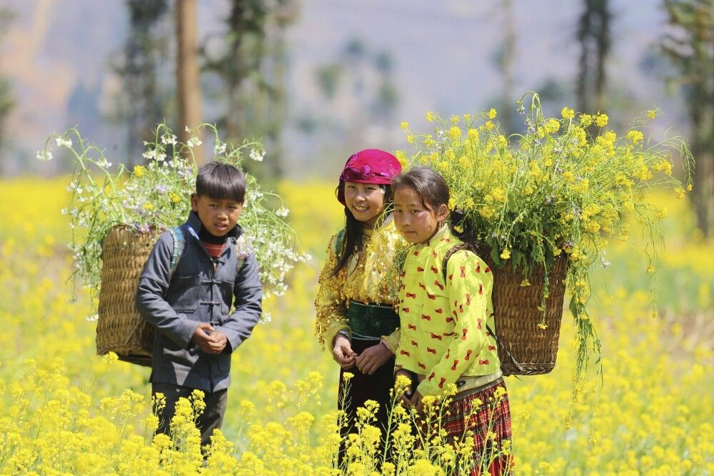 Vietnam - Farbenfrohe Völker im geheimnisvollen Norden