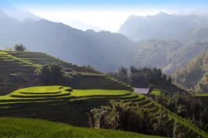 Vietnam - Im Herzen der Reisterrassen