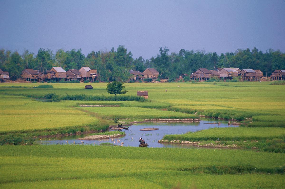 Vietnam  -  Privat unterwegs und unter Palmen
