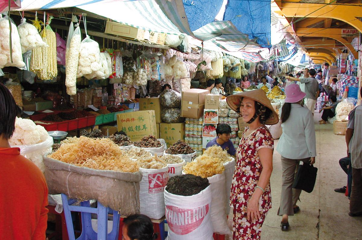 Vietnam  -  Unterwegs und unter Palmen